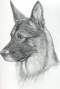 Police Art Drawings Framed Prints - German Shepherd Framed Print by Lorah Buchanan