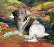 Enzie Shahmiri - German Shorthair Dog...