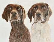 Head And Shoulders Pastels Prints - German Shorthaired Pointers Print by Kate Sumners