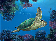 Hawaii Sea Turtle Paintings - Gesture of Aloha by Ed Garcia