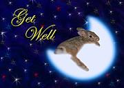 Jeanette K - Get Well Bunny Rabbit
