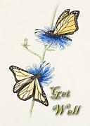 Jeanette K - Get Well Butterflies
