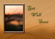 Jeanette K - Get Well Soon Grass Sunset