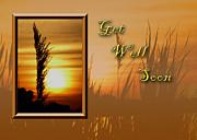 Jeanette K - Get Well Soon Sunset