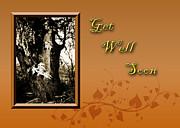 Jeanette K - Get Well Soon Willow Tree