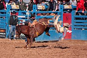 Rodeos Photo Posters - Getting Off Is Easy Poster by Joe Kozlowski