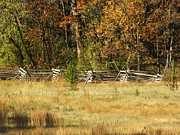 Mary Carol Williams - Gettysburg Battlefield...