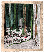 Graveyard Drawings - Ghost Stories Forest Graveyard by jrr by First Star Art