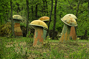 TONY GRIDER - Giant Mushroom Forest