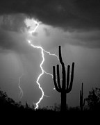 Lightning Bolt Posters - Giant Saguaro Cactus Lightning Strike BW Poster by James Bo Insogna