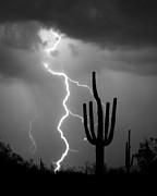 Giant Saguaro Cactus Lightning Strike Bw Print by James BO  Insogna
