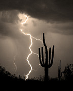 Sepia White Nature Landscapes Prints - Giant Saguaro Cactus Lightning Strike Sepia  Print by James Bo Insogna