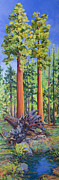Sequoia Paintings - Giant Sequoias with fallen giant by Joy Collier