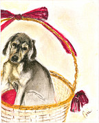 Sight Hound Originals - Gift Basket by Cori Solomon