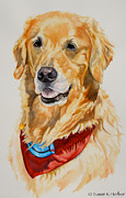 Pet Therapy Prints - Gift Of Gold Print by Susan Herber