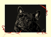French Bulldog Prints Prints - GiGi the Frenchie Print by Barbara Chichester