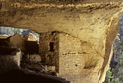 Ancient People Posters - Gila Cliff Dwelling New Mexico Poster by Bob Christopher