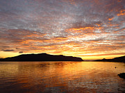 Norwegian Sunset Metal Prints - Gilded Fjord While the Sun Set over Norwegian Mountains Metal Print by David Schoenheit