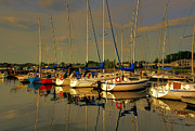 Larry Trupp - Gimli Harbour