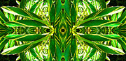Green Leaves Prints - Ginger Goddess - Abstract Art By Sharon Cummings Print by Sharon Cummings