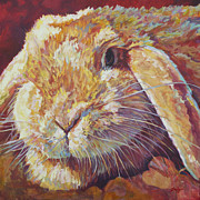 Pet Bunny Posters - Ginger Poster by Patricia A Griffin