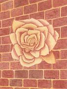 Brick Drawings Metal Prints - Ginger Rose Metal Print by Dusty Reed