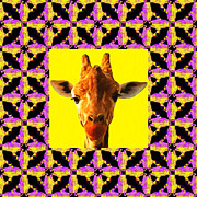 Calming Posters - Giraffe Abstract Window 20130205m88 Poster by Wingsdomain Art and Photography
