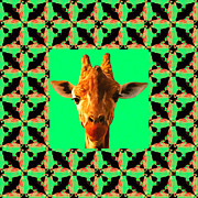 Calming Posters - Giraffe Abstract Window 20130205p0 Poster by Wingsdomain Art and Photography