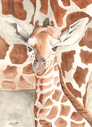 Catherine Basten - Giraffe calf