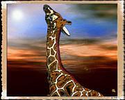 Giraffe Digital Art Originals - Giraffe by Daniel Janda