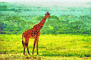 Rift Paintings - Giraffe by George Rossidis