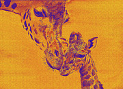 Bonding Digital Art Metal Prints - Giraffe Love Metal Print by Jane Schnetlage