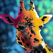 Long Horn Digital Art Posters - Giraffe Poster by Marlene Watson