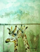 Fencing Originals - Giraffe World by Paula Maybery