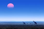 Giraffes On Salt Pans Of Etosha Print by Johan Swanepoel