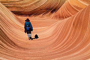 Slickrock Posters - Girl and Dog Hiking The Wave - Vermilion Cliffs National Monument Paria Canyon Arizona Poster by David Rigg