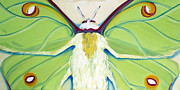 Close Up Painting Metal Prints - Girl Moth Metal Print by Laura Dozor
