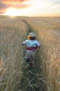 Backs Posters - Girl Running Through Wheat Field Poster by Mirek Weischel