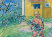 Signed Paintings - Girl with Apple Blossom by Carl Larsson