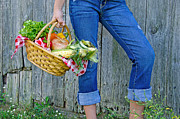 Casual Blue Jeans Prints - Girl with vegetable basket Print by Maria Dryfhout