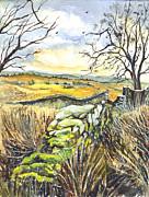 Gisburn Forest Lancashire Uk Print by Carol Wisniewski