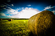 David Morefield - Give me More Hay Bale