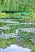 Weeping Willow Photos - Giverny by Olivier Le Queinec