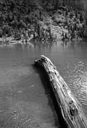 Harold E McCray - Glacier National Park