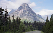 Medicine Bear Prints - Glacier Park Mountain Road - Montana Print by Daniel Hagerman