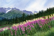 Watercolor  Posters - Glacier Valley Fireweed Poster by Sharon Freeman