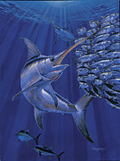 Black Marlin Framed Prints - Gladiator Off0080 Framed Print by Carey Chen