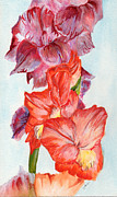 Gladiolas Paintings - Gladiolas 1 by Judith Rice