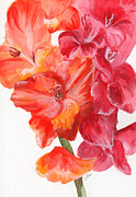 Gladiolas Paintings - Gladiolas 2 by Judith Rice
