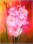 Wildlifeartgallerie Galleries - Gladiolas Sunburst